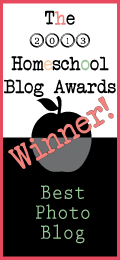 Winner-Best-Photo-Blog-2013