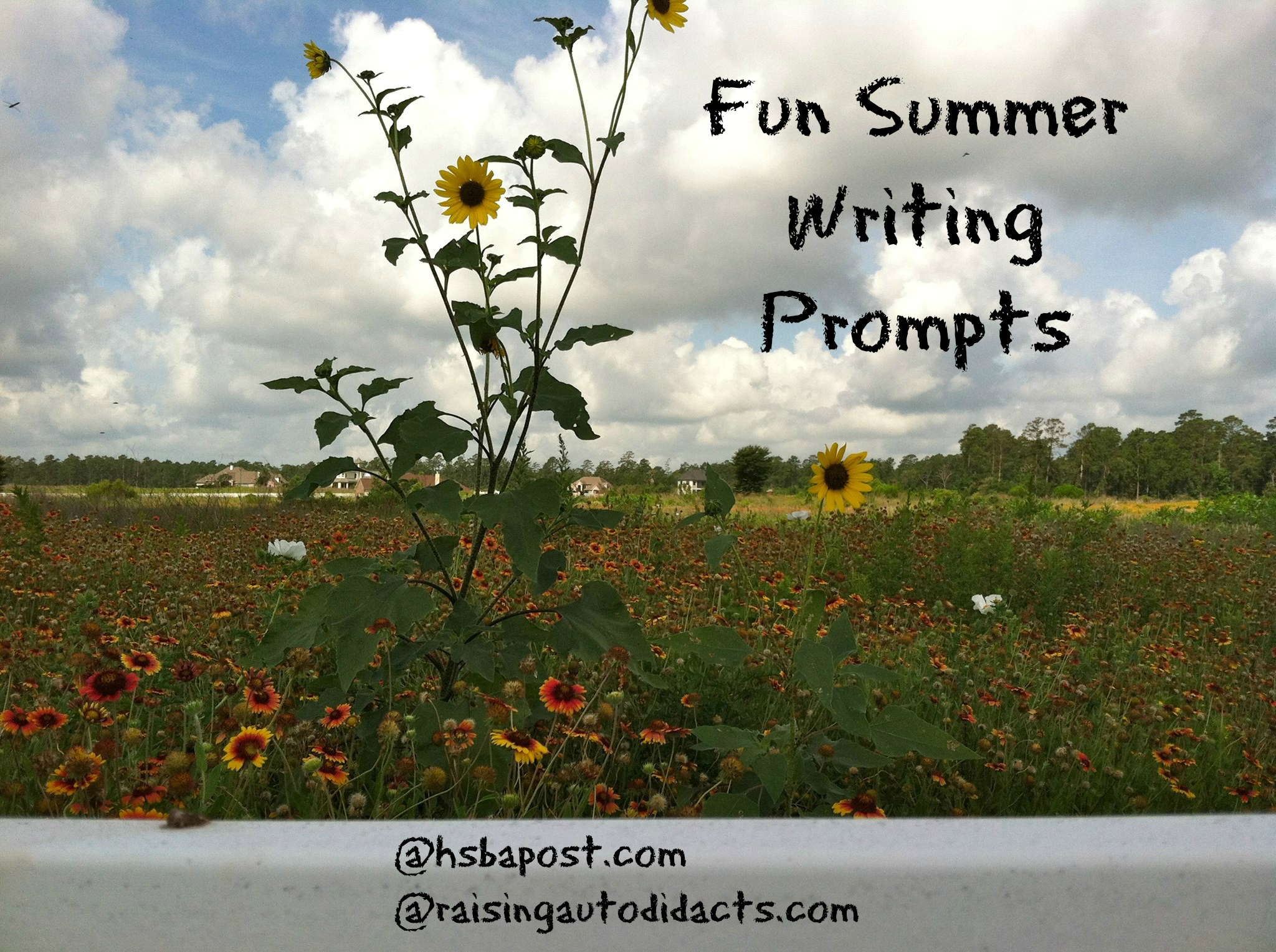 summer fun essay Summer related titles for layouts and cards add your tips, poems, quotes, or title ideas to share with other members.
