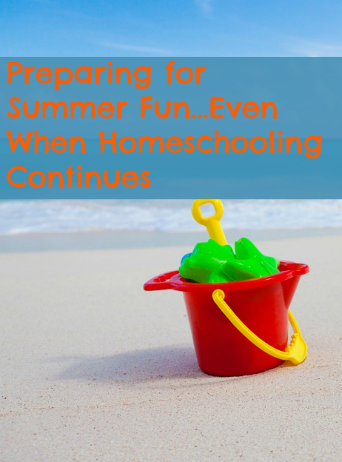 Ideas for summer fun while year round homeschooling