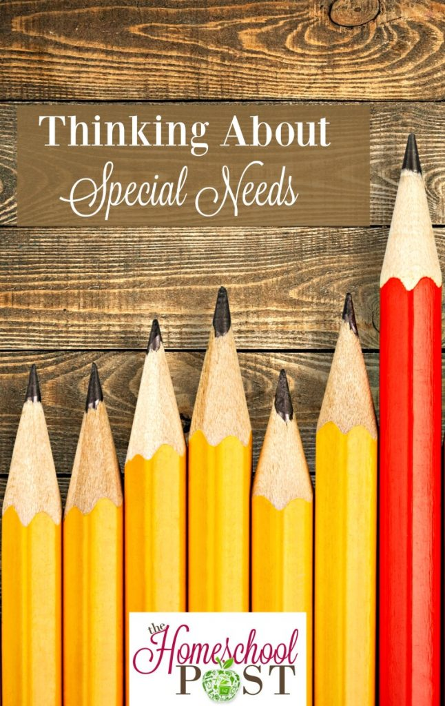 Thinking About Special Needs -- how to support homeschool families with special needs. hsbapost.com