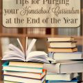 Tips for purging your homeschool curriculum at the end of the year. hsbapost.com