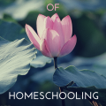 10 Surefire Ways to Lose the Joy of Homeschooling