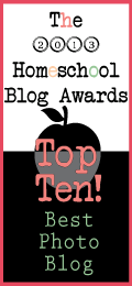 Winner-Top-Ten-Best-Photo-Blog-2013