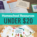 Here is a list of some great bargains I found on homeschool resources under $20. We have used everything on this list so I can vouch for the educational value these things have provided. hsbapost.com