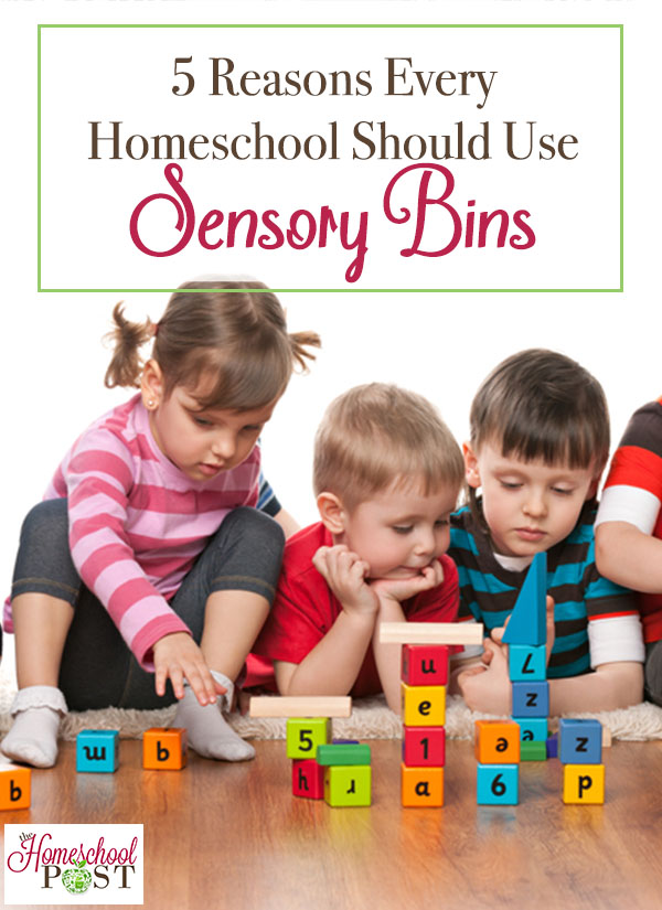 Are you using sensory bins in your homeschool? Here are 5 great reason why you should! hsbapost.com