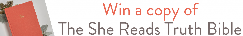 Win a She Reads Truth Bible